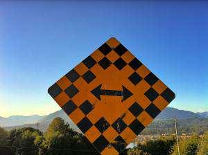 street-sign-do-i-need-multiple-websites